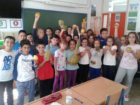 Actividades en el huerto escolar y jard n bot nico c e i for Ceip jardin botanico