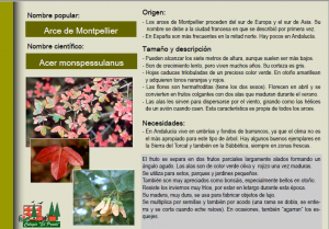 GUÍA DE PLANTAS 2